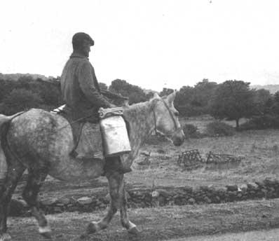 Pastor trasportando leche
